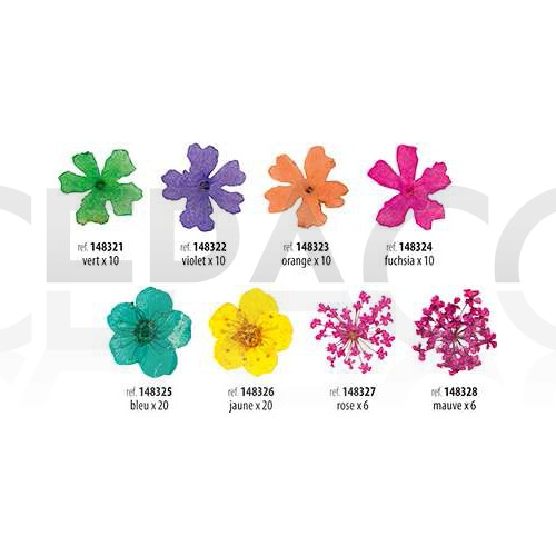 decors d 39 ongles fleurs sechees cepaco le centre d 39 achat de la coiffure et de l 39 esth tique. Black Bedroom Furniture Sets. Home Design Ideas