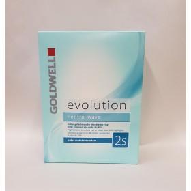 KIT PERMANENTE EVOLUTION N°2s Cheveux éclaircis ou décolorés